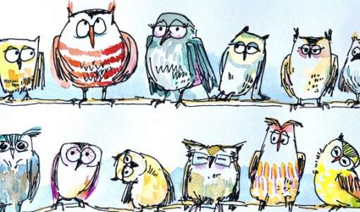 Mit Spaß Zeichnen lernen – Eulen und andere schräge Vögel