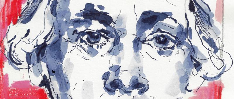 Kompaktworkshop Portraits – einfach, schnell und locker