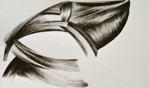 Die Freiheit der Zeichnung - Füllerspiele mit Licht und Schatten