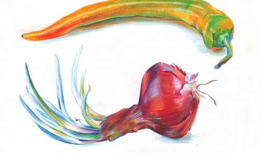 Zeichnen mit Farbstiften – lebendige Pflanzenporträts