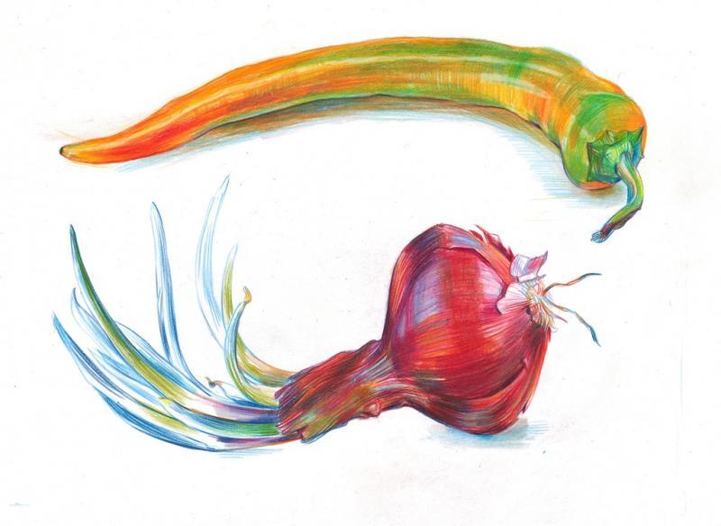 Zeichnen mit Farbstiften - lebendige Pflanzenportraits