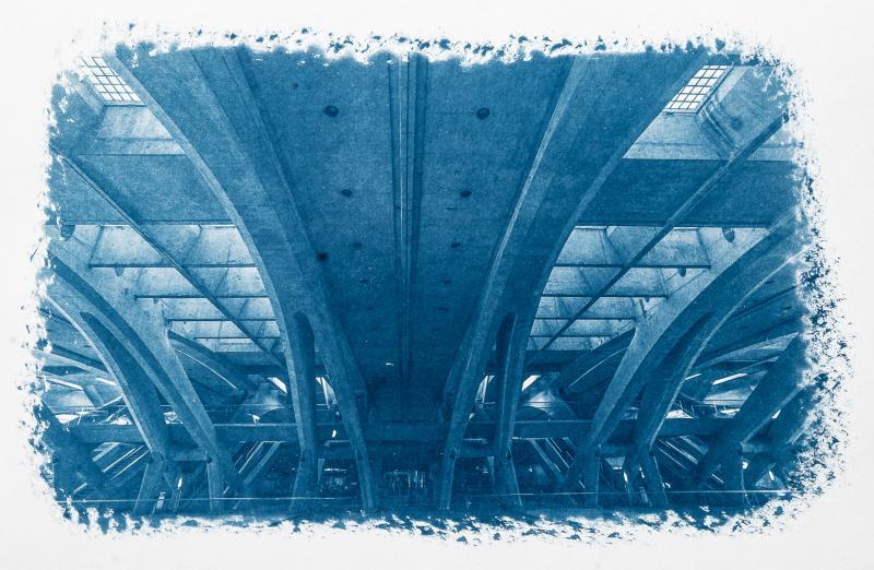 Cyanotypie Digital – Die Kunst der blauen Bilder